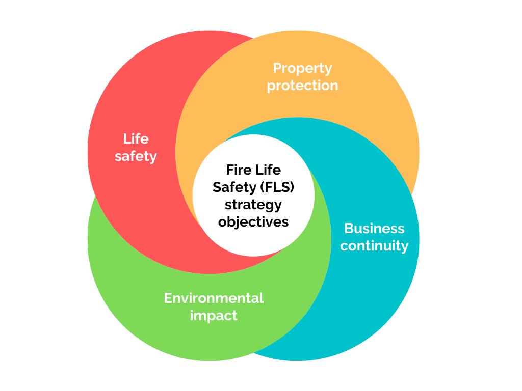 FLS Strategy Objectives